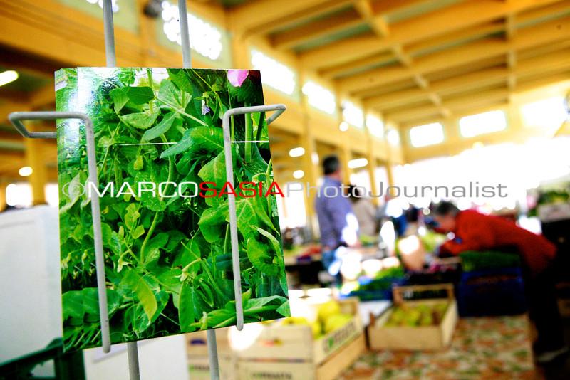 065-Market_Zone2014.jpg