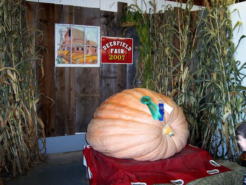 Giant pumpkin.