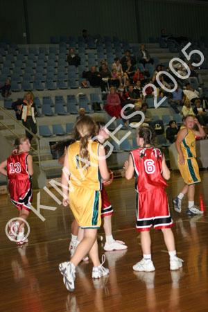 Comets Vs Illawarra 12W