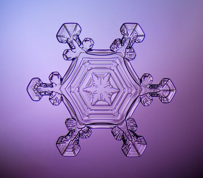 snowflake-0248-Edit.jpg