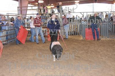 2009 Klein ISD Swine Show Class 5
