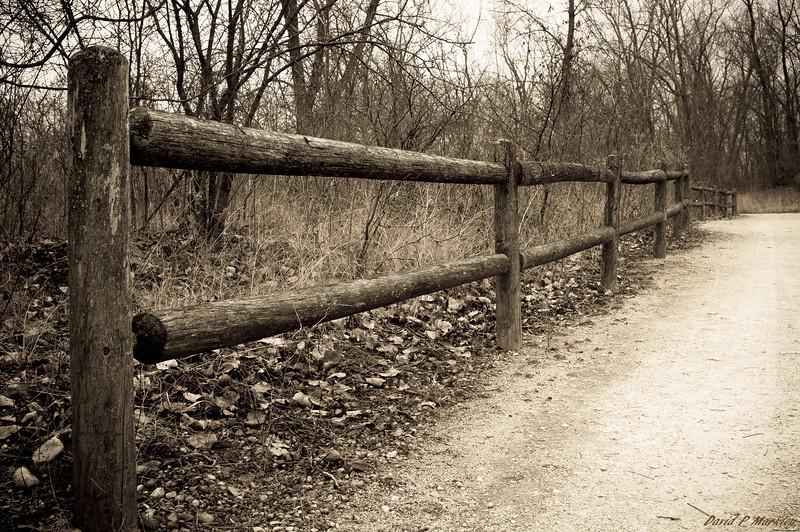 Rotting Rail