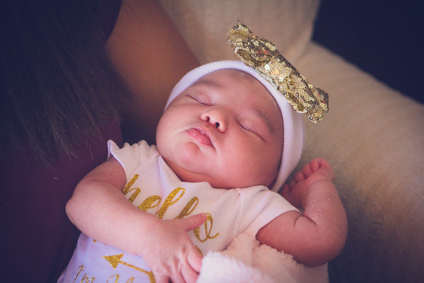 Johanna Newborn Photos