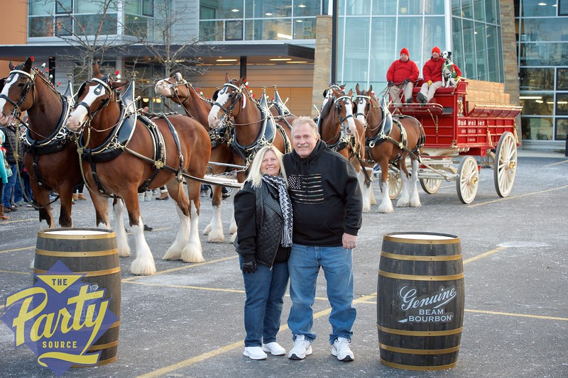 Clydesdale Portraits 290.jpg
