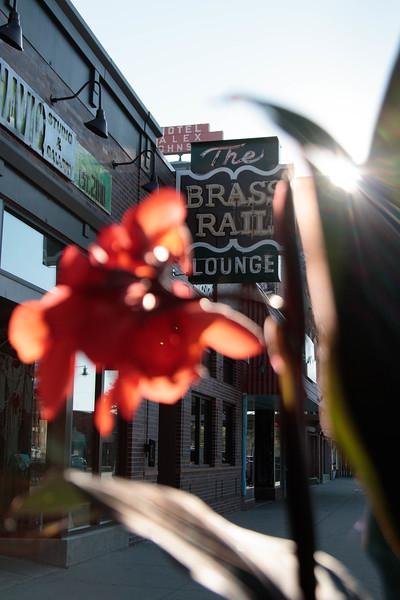 Brass Rail-1.jpg