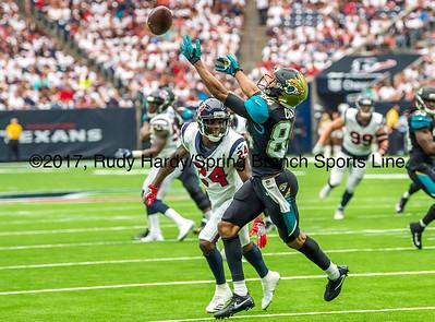 20170910 Jaguars vs Texans