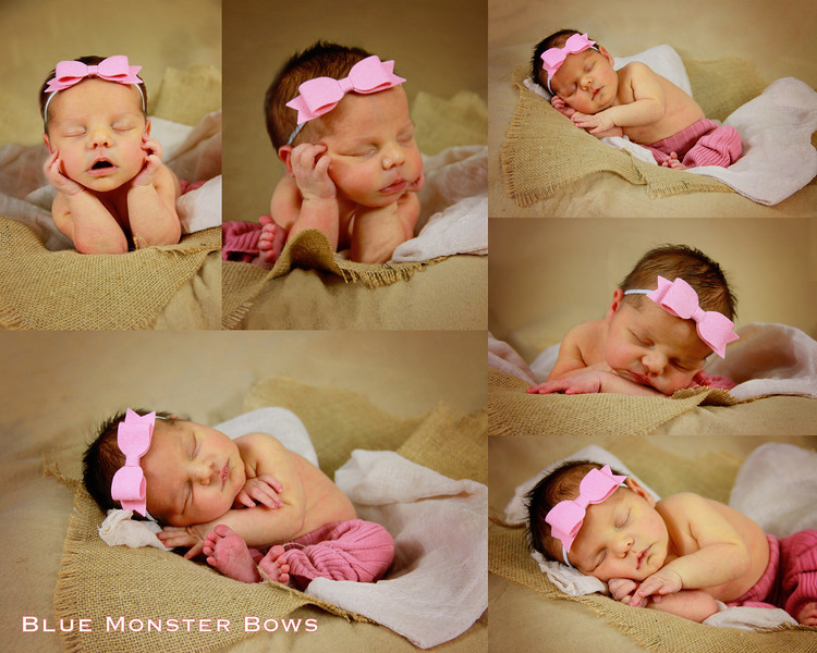 pink bow collage.jpg