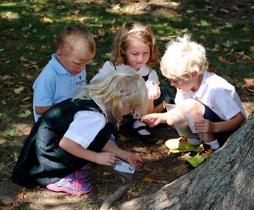 Kindergarten Students Adopt-A-Tree