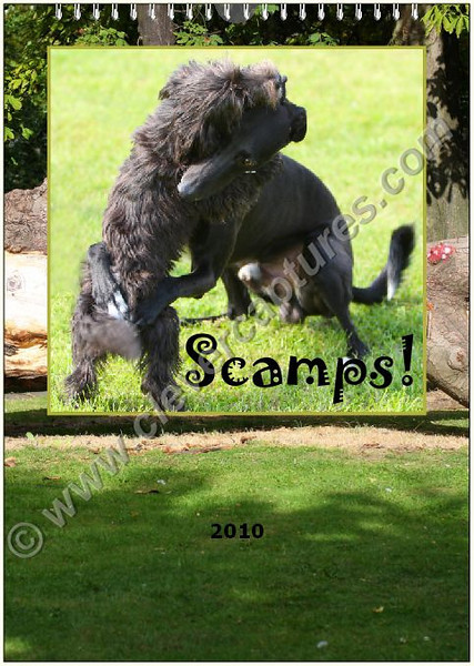 Scamps 2009