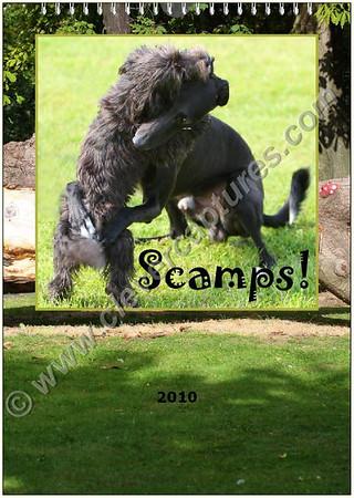 Scamps Doggie Calendar 2010
