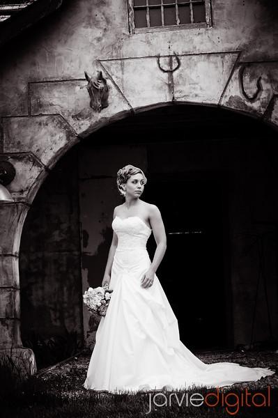 Carissa's Bridals