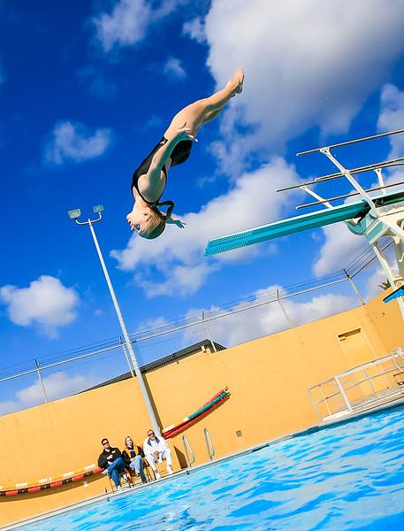 Diving (1).jpg