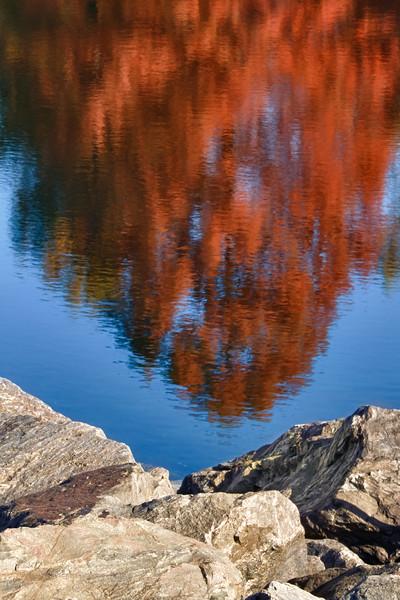 Tamrac Reflections