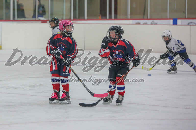 Blizzard Hockey 111719 7530.jpg