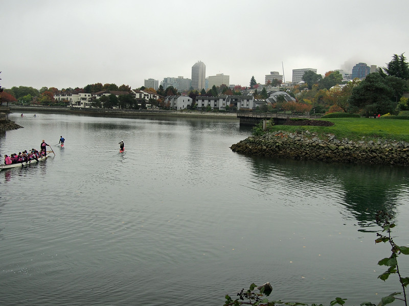 Oct. 19/13 - Alder Bay, beside Sutcliffe Park
