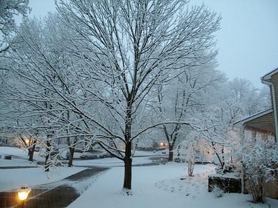 2013-03-25 Spring Snow!