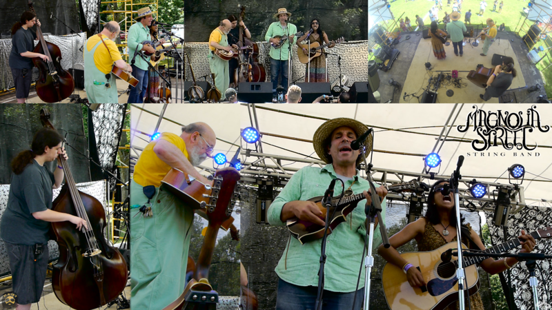 Magnolia Street String Band