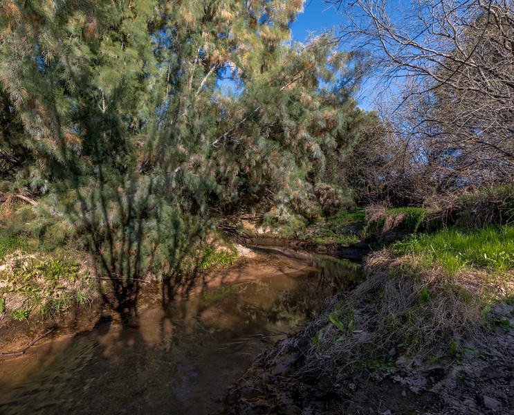 Santa Cruz River #6