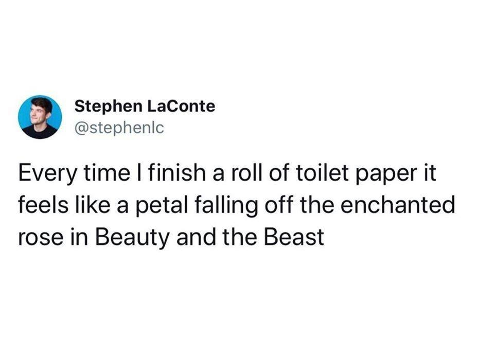 Every time I finish a roll of toilet paper it feels like a petal falling off the enchanted rose in Beauty and the Beast
