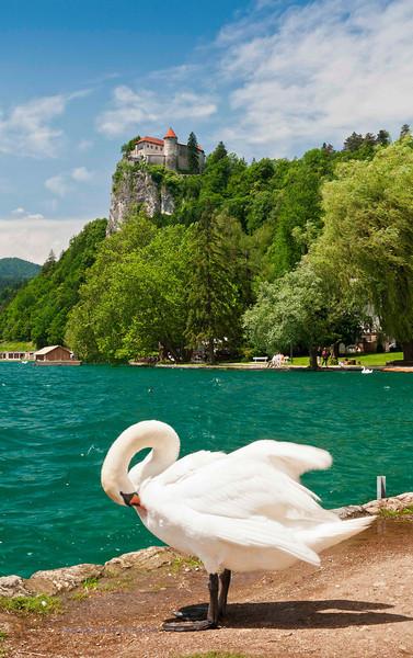 Lake Bled 1_1.jpg