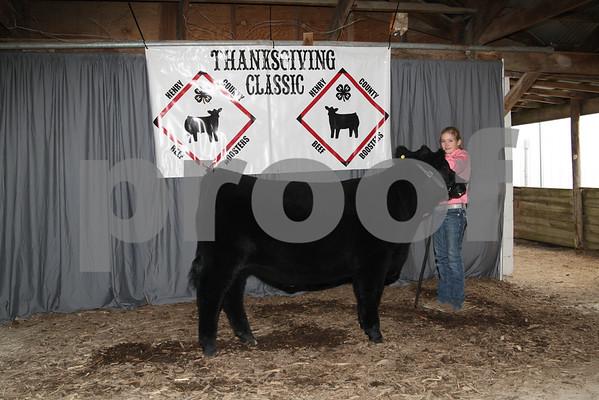 Steer Show Backdrop