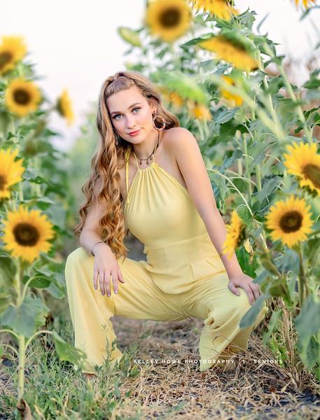 Sunflower 1130-Edit.jpg