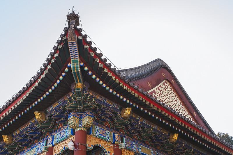 BeijingMarch2019-23.jpg