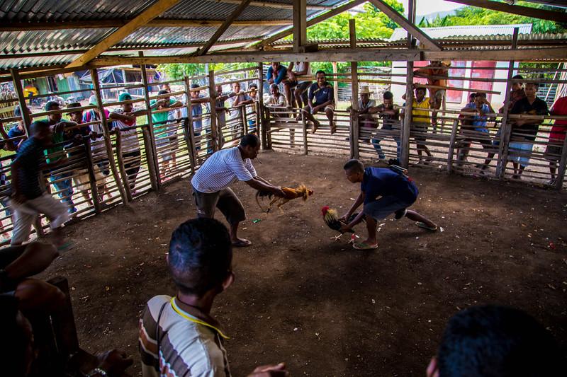 Timor Leste-118.jpg