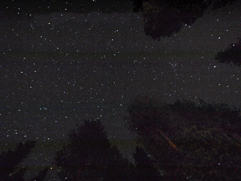 A small percentage of the stars you can see there