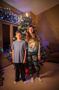 2014 Dec - Xmas Tree