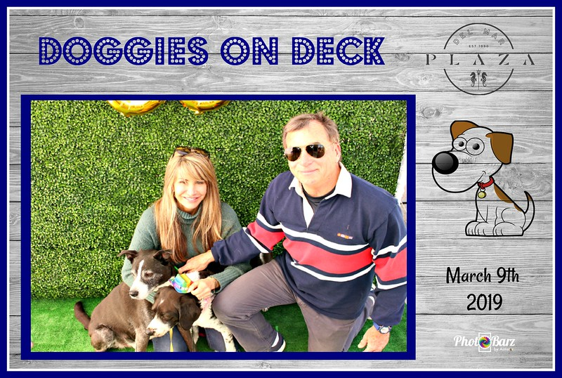 Doggys on Deck13.jpg