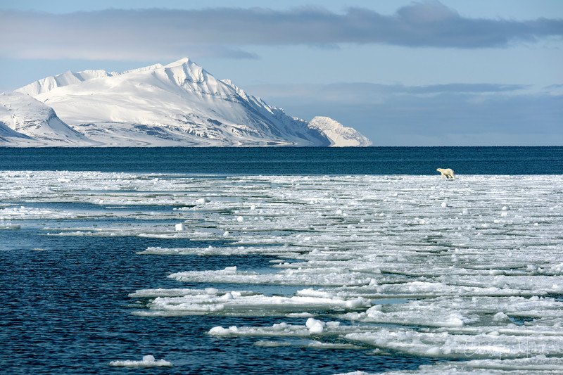 5-27-17020403fjord svalbard.jpg