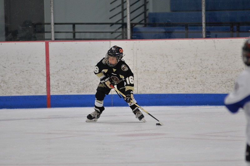 DSC_6980_vs Chicago Bulldogs.JPG