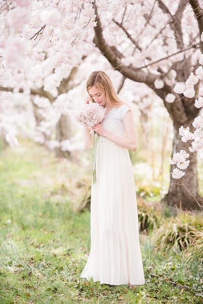 Cherry Blossoms (122 of 182).jpg