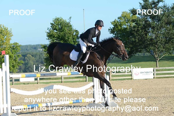 ALEXANDRA GREEN AND FERNHILL LIMITED EDITION #11