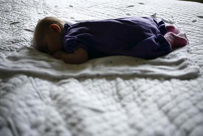 Daisy Sleeps. June 2011