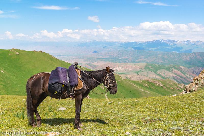 Song Kol Horse Trek-6106206.jpg