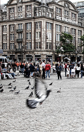 Fine Art Amsterdam