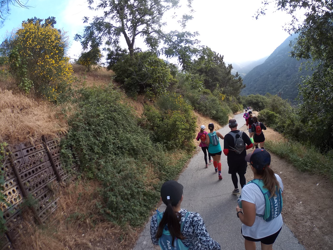 FFSB: Trail Marathon Training Group - Chantry Flats