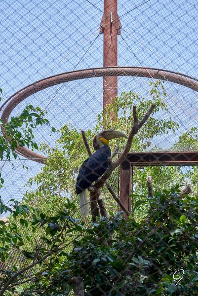 Biopark 300616W-63.jpg