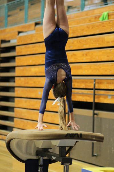 2014_03_27 Gymnastics LCC vs Westview Web 0007.JPG