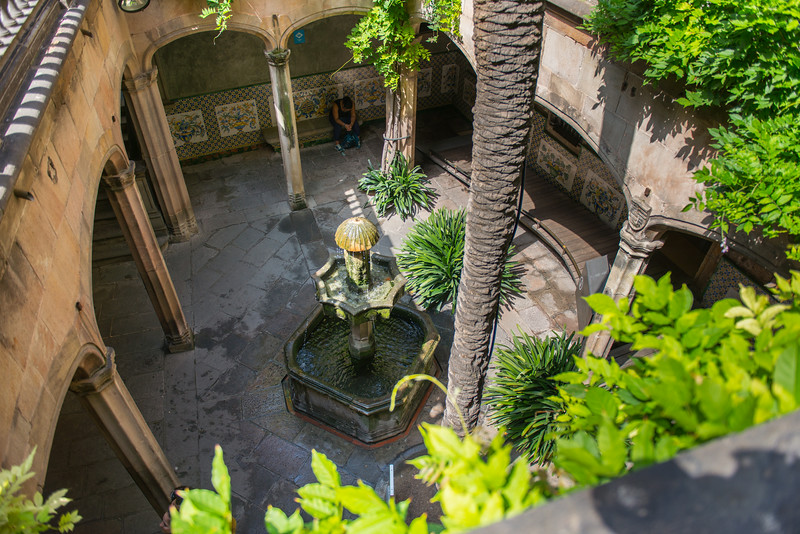 Palm Court near Barcelona Cathedral