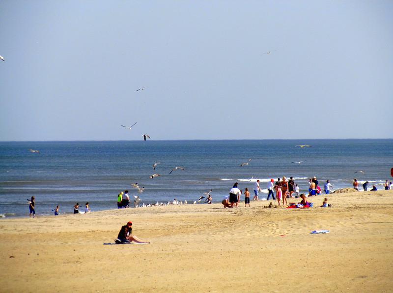 Virginia Beach (12).jpg