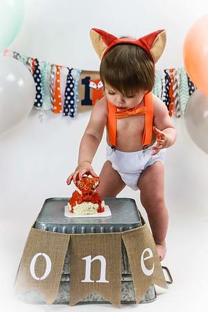 Cake Smash 1 year