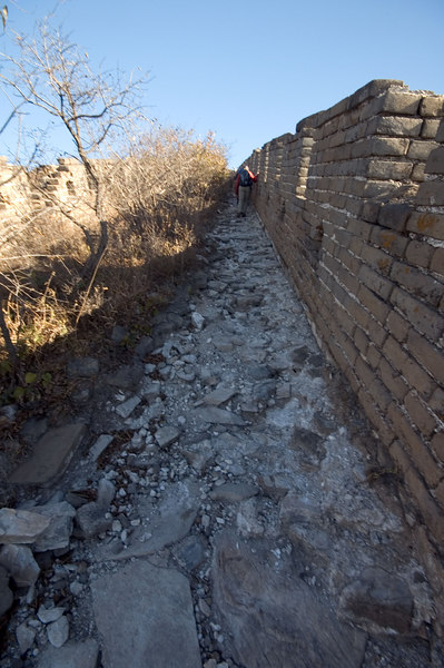 WildWall Great Wall Trip