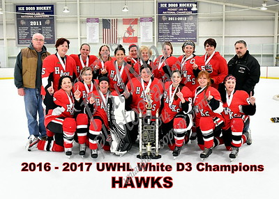 White D3 Championship - Hawks vs Flames