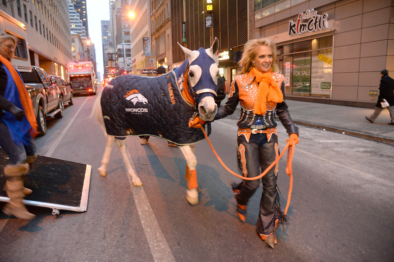 . Annie Wegener with Thunder, the Broncos� Arabian gelding mascot, made an appearance on the Today show on January 31, 2014 on a brisk morning. Annie Wegener will ride Thunder after touchdowns. (Photo by John Leyba/The Denver Post)