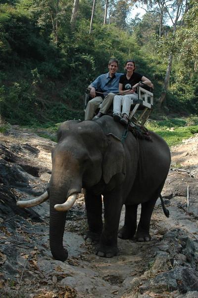 Elephant Ride - Chiang Mai, Thailand