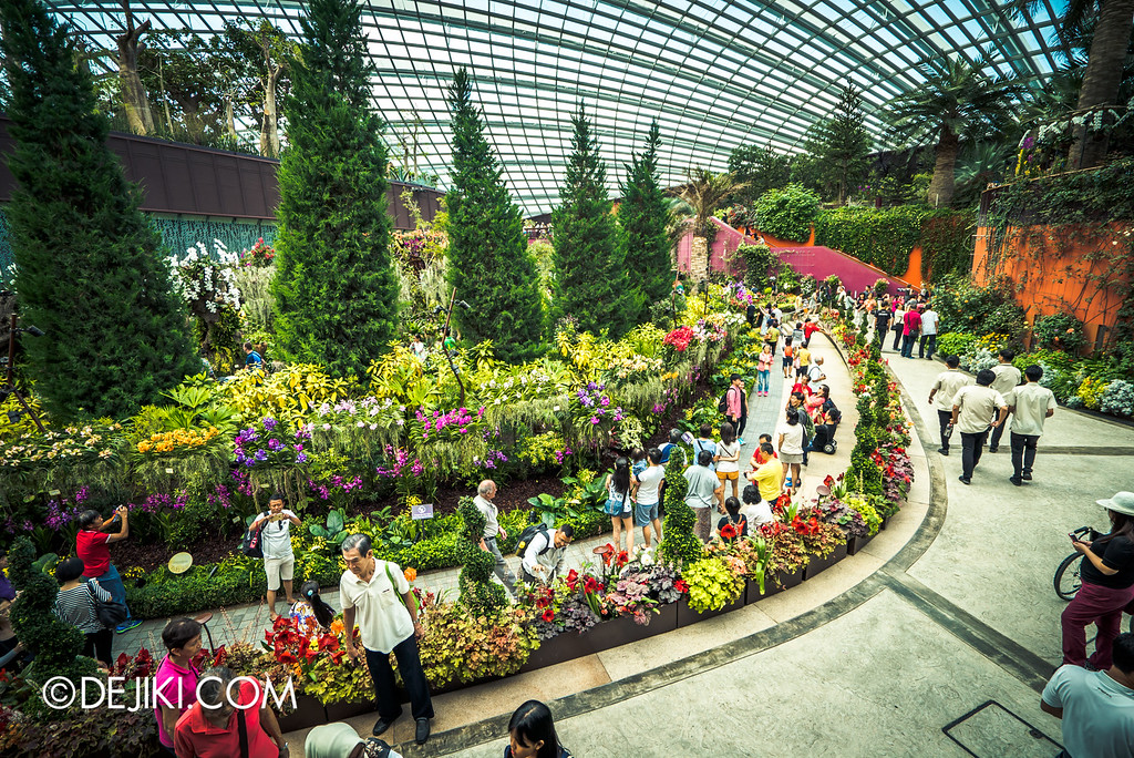 Gardens by the Bay - Orchid Extravaganza 2016 - flower field backview from level 2