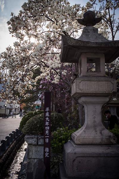 Nagano 11041316 .jpg